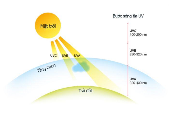 Tác động của tia UV đến trái đất