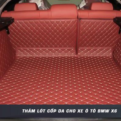 Tham-lot-cop-da-cho-xe-oto-BMW-X6-tai-panda-auto