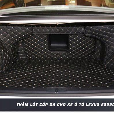 Tham-lot-cop-da-cho-xe-oto-LEXUS-ES250-tai-panda-auto